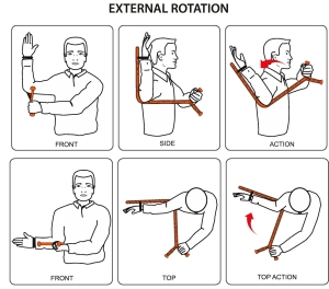 The Rotator (Demonstrating External Rotation)