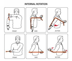 The Rotator (Demonstrating Internal Rotation)